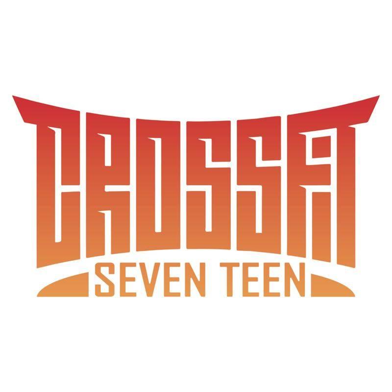crossfit-seventeen.jpg